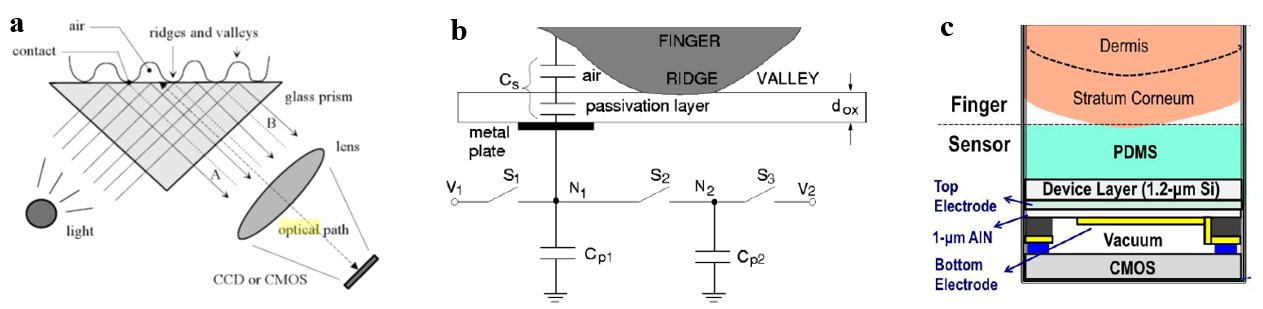 Figure 1. Optical (a) [3], capacitive (b) [4] and ultrasound (c) [1] fingerprint scanner schematic.